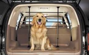 изоляция багажника при перевозке животных